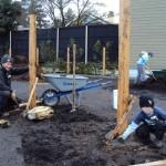 Depave-W&S_Planting3