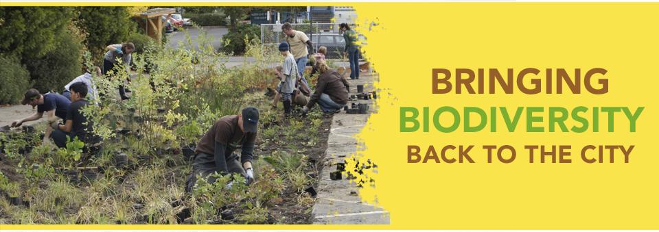 Bringing Biodiversity Back