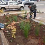 Ray and Ayalew working on the rain garden.